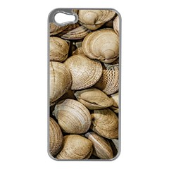 Shellfishs Photo Print Pattern Apple Iphone 5 Case (silver)