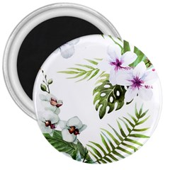 Tropical Flowers 3  Magnets by goljakoff