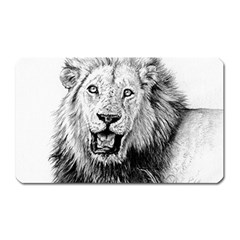 Lion Wildlife Art And Illustration Pencil Magnet (rectangular)