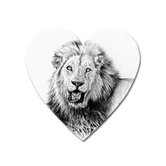 Lion Wildlife Art And Illustration Pencil Heart Magnet by Sudhe