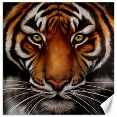 The Tiger Face Canvas 12  X 12