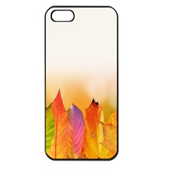 Autumn Leaves Colorful Fall Foliage Iphone 5 Seamless Case (black) by Sudhe