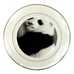 Panda Bear Sleeping Porcelain Plates