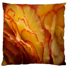 Flowers Leaves Leaf Floral Summer Large Cushion Case (two Sides)