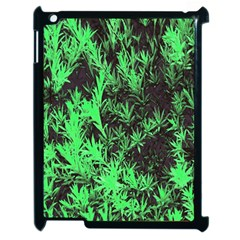 Green Etched Background Apple Ipad 2 Case (black)