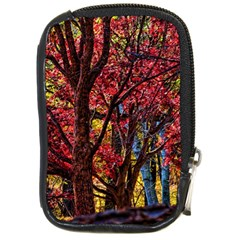 Autumn Colorful Nature Trees Compact Camera Leather Case