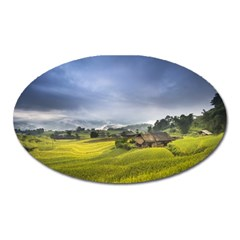 Vietnam Terraces Rice Silk Oval Magnet