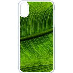 Green Leaf Plant Freshness Color Iphone Xs Seamless Case (white)