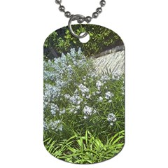 Lurie Garden Amsonia Dog Tag (two Sides) by Riverwoman