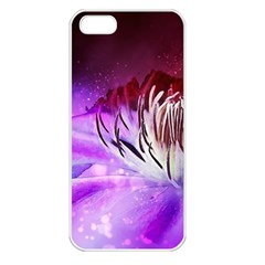 Clematis Structure Close Up Blossom Iphone 5 Seamless Case (white)