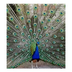 Peacock Bird Animal Feather Shower Curtain 66  X 72  (large)