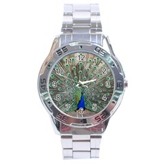 Peacock Bird Animal Feather Stainless Steel Analogue Watch by Pakrebo