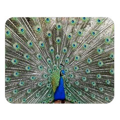 Peacock Bird Animal Feather Double Sided Flano Blanket (large)
