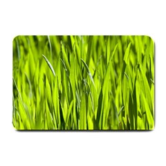 Agricultural Field   Small Doormat  by rsooll