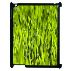 Agricultural Field   Apple Ipad 2 Case (black) by rsooll