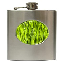 Agricultural Field   Hip Flask (6 Oz) by rsooll