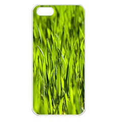 Agricultural Field   Iphone 5 Seamless Case (white) by rsooll