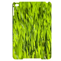 Agricultural Field   Apple Ipad Mini 4 Black Frosting Case by rsooll