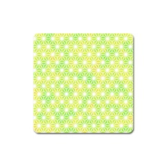 Traditional Patterns Hemp Pattern Square Magnet