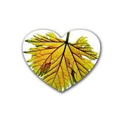 Leaf Grape Vine Sunlight Garden Rubber Coaster (heart)