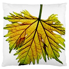 Leaf Grape Vine Sunlight Garden Standard Flano Cushion Case (one Side)