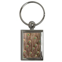 Peacock Feather Bird Exhibition Key Chains (rectangle)  by Pakrebo