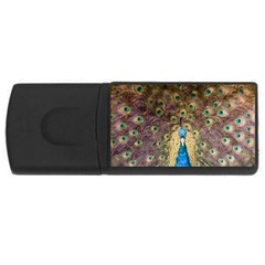 Peacock Feather Peacock Feather Rectangular Usb Flash Drive by Pakrebo