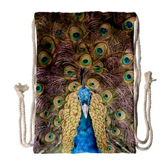 Peacock Feather Peacock Feather Drawstring Bag (large)