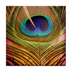Peacock Feather Bird Colorful Tile Coasters by Pakrebo