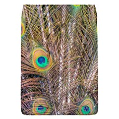 Pen Peacock Wheel Plumage Colorful Removable Flap Cover (s)