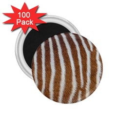 Skin Zebra Striped White Brown 2 25  Magnets (100 Pack)