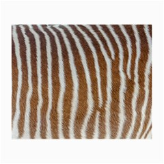 Skin Zebra Striped White Brown Small Glasses Cloth