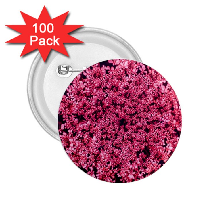 Queen Annes Lace in Red Part II 2.25  Buttons (100 pack)