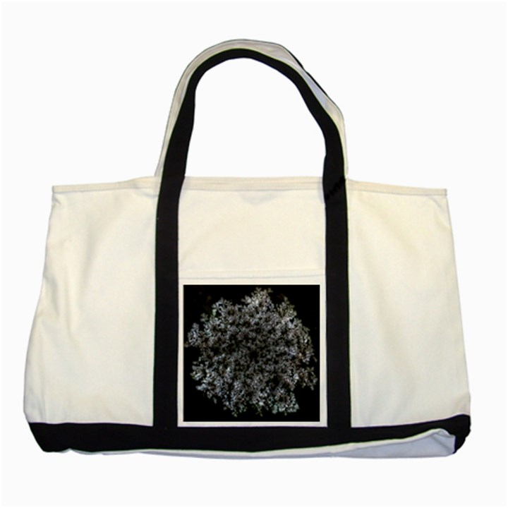 Queen Annes Lace in White Two Tone Tote Bag