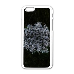 Queen Annes Lace In White Iphone 6/6s White Enamel Case