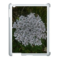 Queen Annes Lace Original Apple Ipad 3/4 Case (white) by okhismakingart