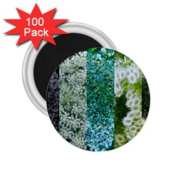 Queen Annes Lace Vertical Slice Collage 2 25  Magnets (100 Pack)  by okhismakingart