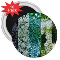 Queen Annes Lace Vertical Slice Collage 3  Magnets (10 Pack)  by okhismakingart