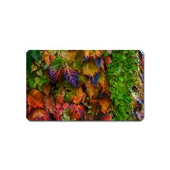 Fall Ivy Magnet (name Card) by okhismakingart