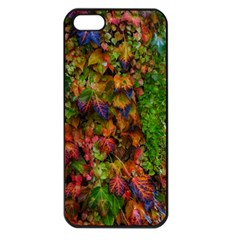 Fall Ivy Iphone 5 Seamless Case (black) by okhismakingart
