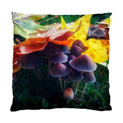 Mushrooms Standard Cushion Case (two Sides) by okhismakingart