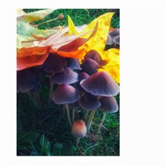 Mushrooms Large Garden Flag (two Sides) by okhismakingart