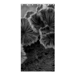 Tree Fungus Black And White Shower Curtain 36  X 72  (stall)  by okhismakingart