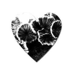 Tree Fungus High Contrast Heart Magnet by okhismakingart