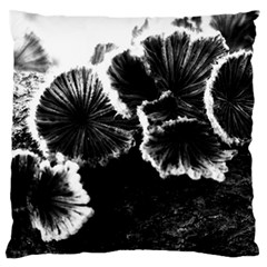 Tree Fungus High Contrast Large Flano Cushion Case (two Sides) by okhismakingart