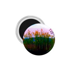 Field Of Goldenrod 1 75  Magnets by okhismakingart