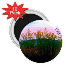 Field Of Goldenrod 2 25  Magnets (10 Pack)