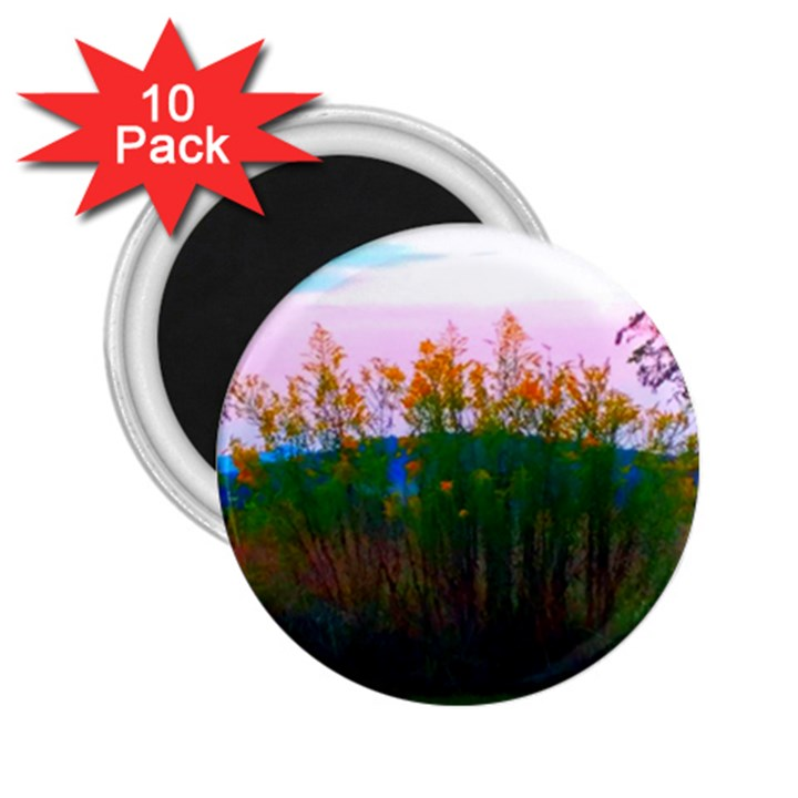 Field of Goldenrod 2.25  Magnets (10 pack)
