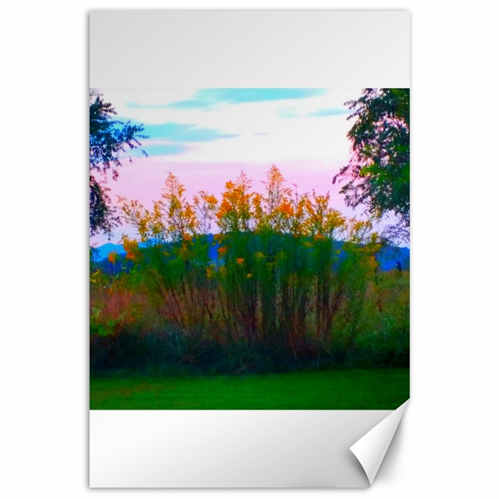 Field of Goldenrod Canvas 24  x 36