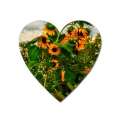 Sunflowers Heart Magnet
